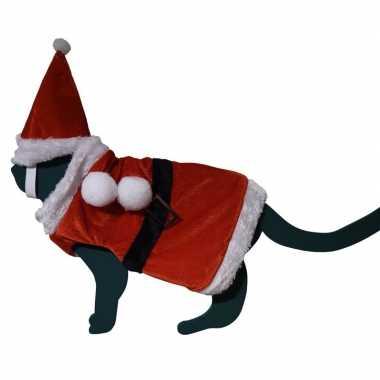 Katten / poezen kerstmankleding met hoed one size